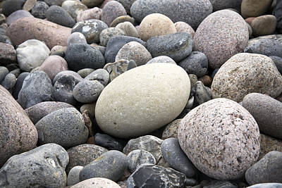 Pebble Beach Photograph - Pebbles by Frank Tschakert