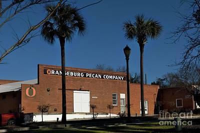 Photograph - Pecan Company Orangeburg Sc by Bob Pardue