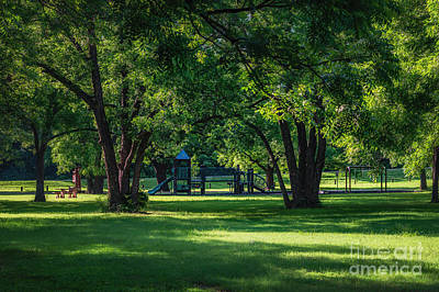 Photograph - Pecan Grove In Summer by Tamyra Ayles
