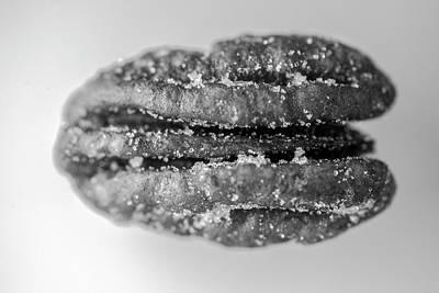 Photograph - Pecan Nut Macro Black White 2967 by David Haskett