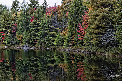 Peck Lake Shoreline Original