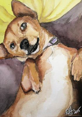 Painting - Pedro The Chi-weenie by Rachel Hames