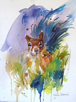 Squirrel Watercolor Painting - Peek A Boo by P Maure Bausch