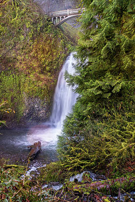 Photograph - Peek-a-boo View Of Multnomah Falls by Lynn Bauer