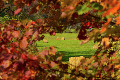 Photograph - Peek At Fall Colors And Hay Bales by Jeff Folger