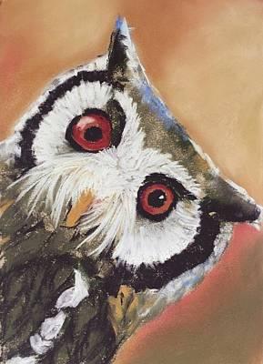 Drawing - Peekaboo Owl by Cristel Mol-Dellepoort