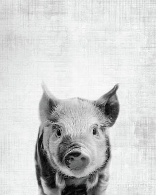 Baby Pigs Wall Art - Photograph - Peekaboo Piglet by Delphimages Photo Creations