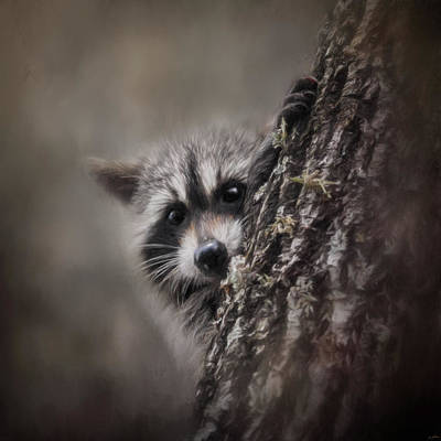 Painting - Peekaboo Raccoon Art by Jai Johnson