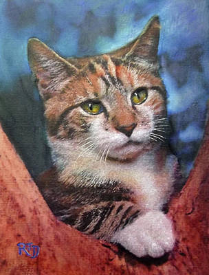 Painting - Peekaboo Tabby by Richard James Digance