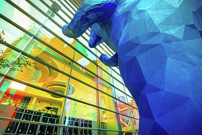 Photograph - Peeking In - Denver Blue Bear by Gregory Ballos