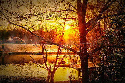 Peeking Through - Lake Sunrise Art Print by Barry Jones