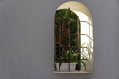 Photograph - Peeking Through The Garden Fence Window - Geometric Bars And Shadows by Georgia Mizuleva