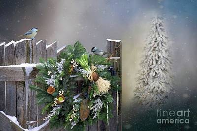 Photograph - Peeking Through The Garden Gate by Janette Boyd