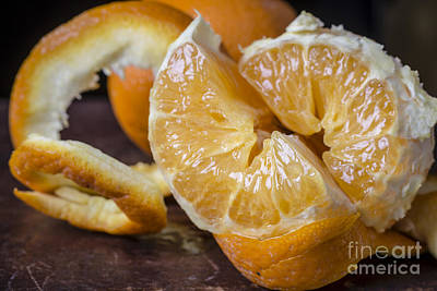 Segment Photograph - Peeled Orange Still Life by Edward Fielding