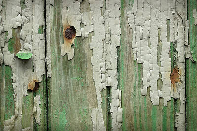 Photograph - Peeling 3 by Mike Eingle