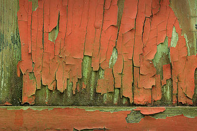 Art Print featuring the photograph Peeling 4 by Mike Eingle