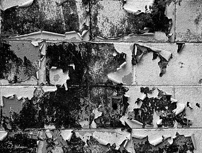 Photograph - Peeling by Christopher Holmes