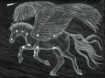 Pegasus Drawing - Pegasus Across The Northern Sky by Philip Harvey