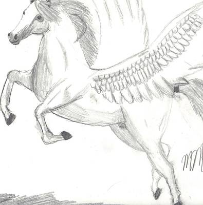Pegasus Drawing - Pegasus by Maddi Pollihan