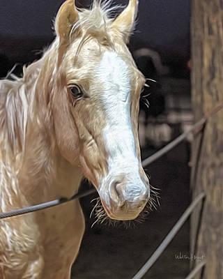Photograph - Pegasus  by Walter Herrit