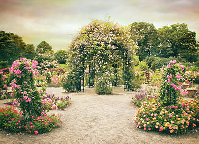 Photograph - Peggy's Rose Garden by Jessica Jenney