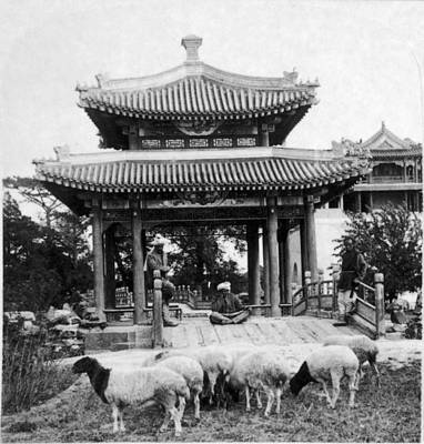 Ching Dynasty Photograph - Peking: Summer Palace by Granger