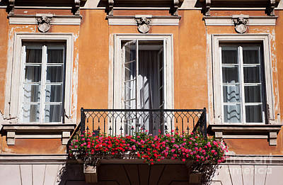 Pelargonium Peltatum Flowers On Balcony  Print by Arletta Cwalina