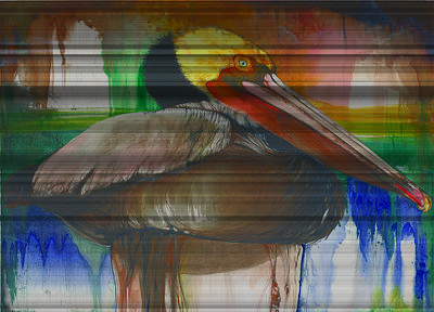 Mixed Media - Pelican by Anthony Burks Sr