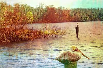 Photograph - Pelican At Dead Lake by Alice Gipson