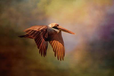 Photograph - Pelican At Sunrise by Jai Johnson