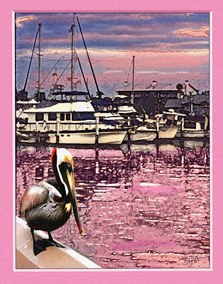 Pelican At Sunset 1 Art Print by John Breen