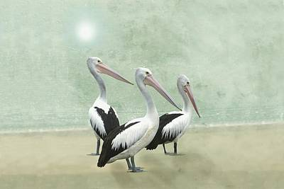 Digital Art - Pelican Beach Long by David Dehner