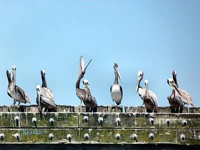 Photograph - Pelican Briefing by Sadie Reneau