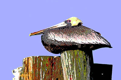 Sandpiper Mixed Media - Pelican by Charles Shoup
