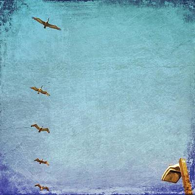 Iphone Photograph - Pelican Fly Over #gulfshoresalabama by Joan McCool