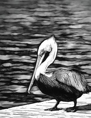 Photograph - Pelican In Black by Alice Gipson