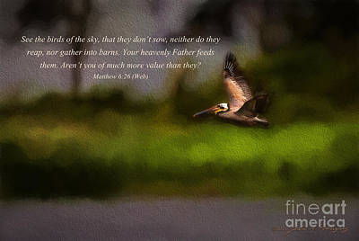 Photograph - Pelican In Flight With Bible Verse by John A Rodriguez