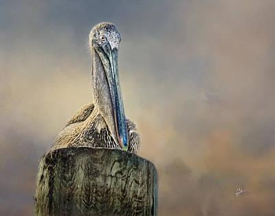 Pelican In Paradise Art Print