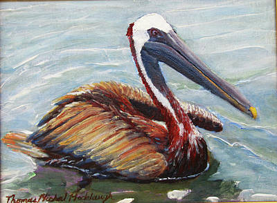 Painting - Pelican In The Water by Thomas Michael Meddaugh