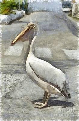 Pelican Photograph - Pelican In Tinos Town by George Atsametakis