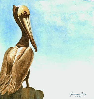 Art Print featuring the painting Pelican by Jeanne Kay Juhos
