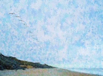 Pelican Mission Art Print
