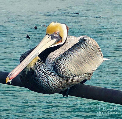Photograph - Pelican On Huntington Beach Pier by Gregory Dyer