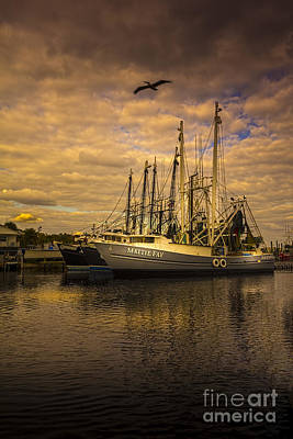 Pelican Over Mattie Fay Art Print by Marvin Spates