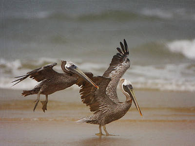 Photograph - Pelican Pair by Charles McKelroy