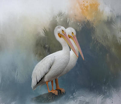 Photograph - Pelican Pair by Kim Hojnacki