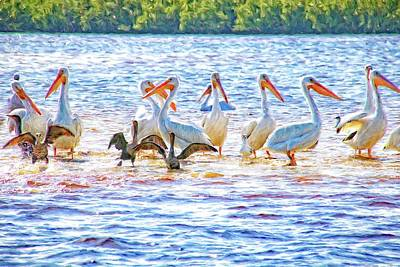 Photograph - Pelican Party by Alice Gipson