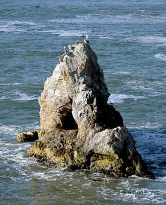Photograph - Pelican Peak Pismo Beach by Barbara Snyder