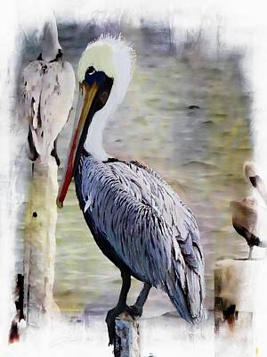 Painting - Pelican Perch by Barbara Chichester