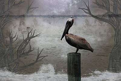 Photograph - Pelican Perch,ocean,sarasota, by Athala Carole Bruckner